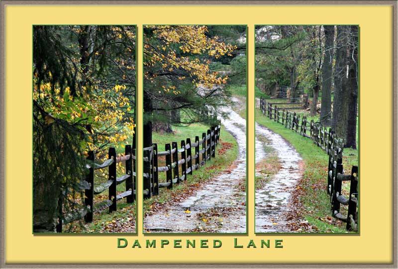 Dampened Lane