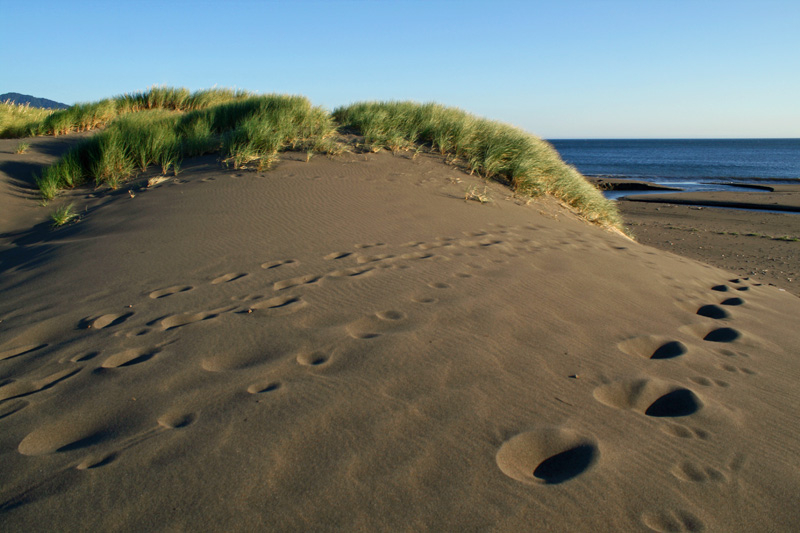 Footprints and Dune