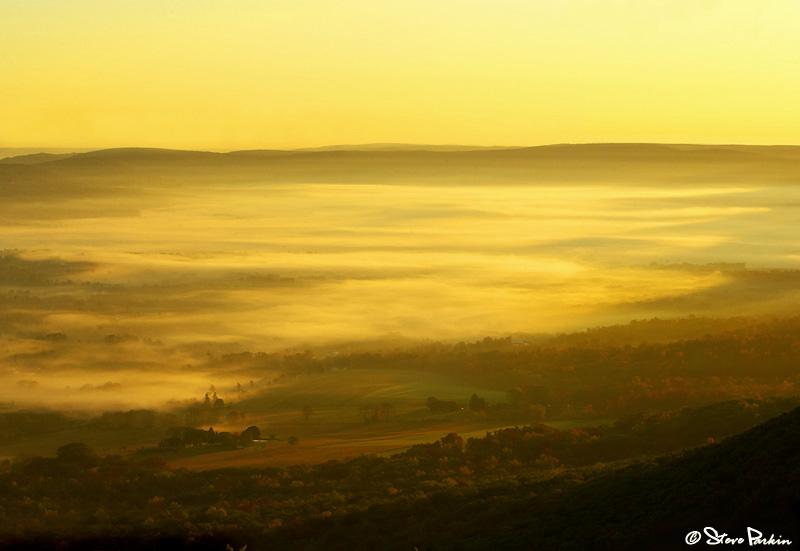 Fog Farm - Ramm Road Vista