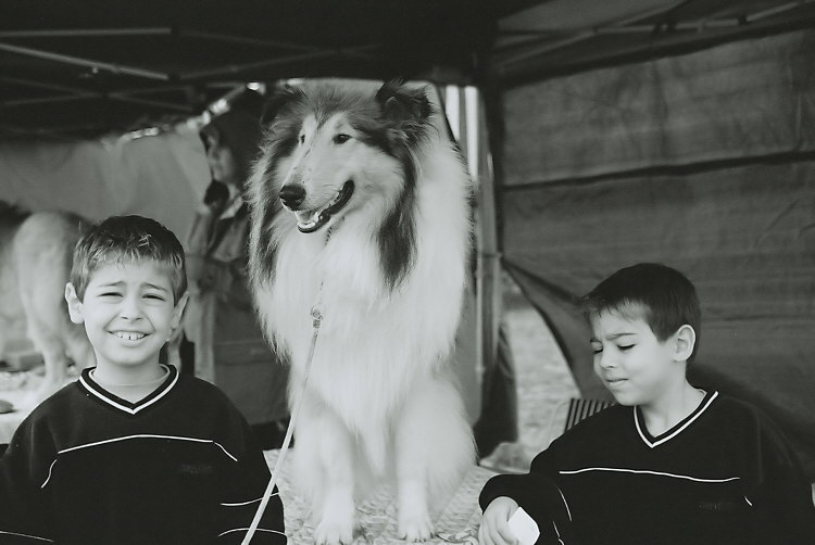 With Lassie 2