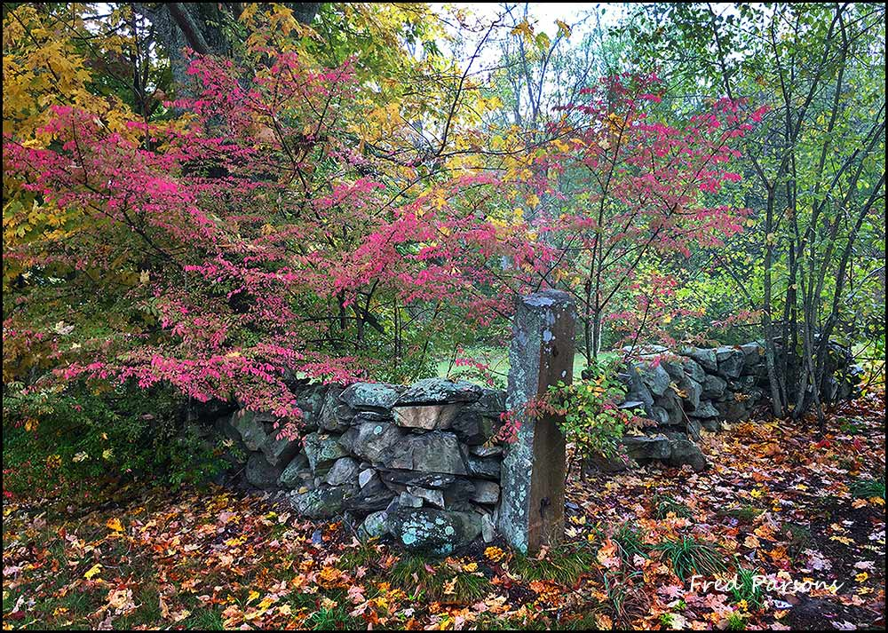 IMG_1489 Post and Stonewall