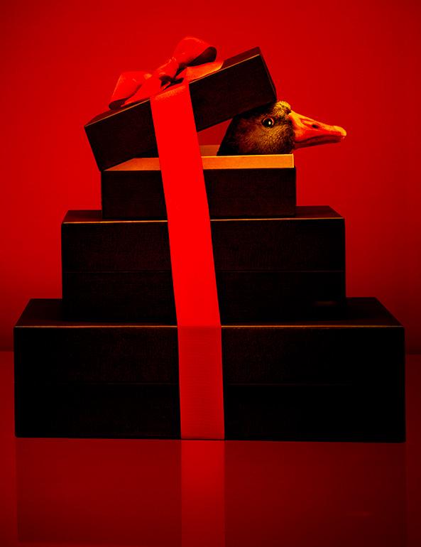 Window display - Louis Vuitton
