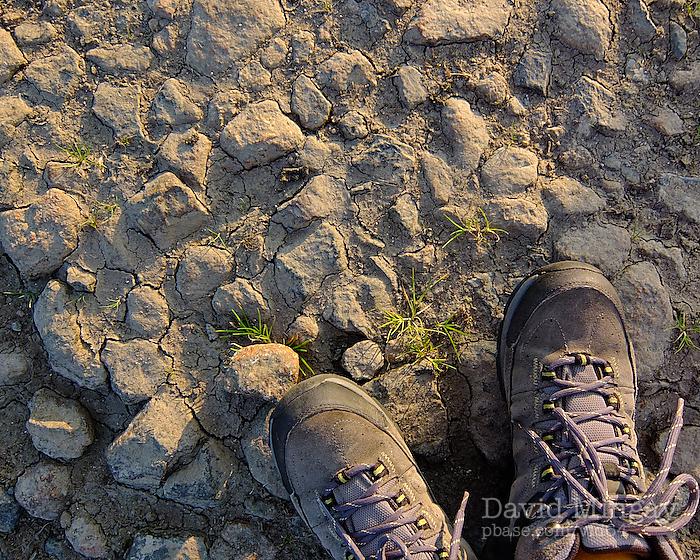 Sep 14: Dry