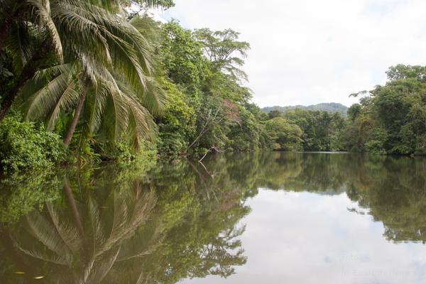 Rio Lamparas, Afluente del Rio Dulce
