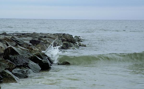 Long Beach Island -Surf #1