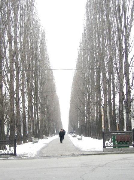 Cold walk Kiev Ukraine.JPG