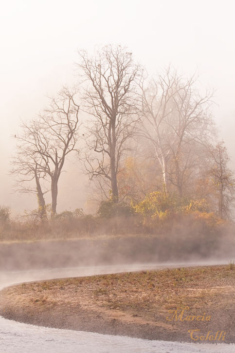 MISTY MORNING_1848.jpg