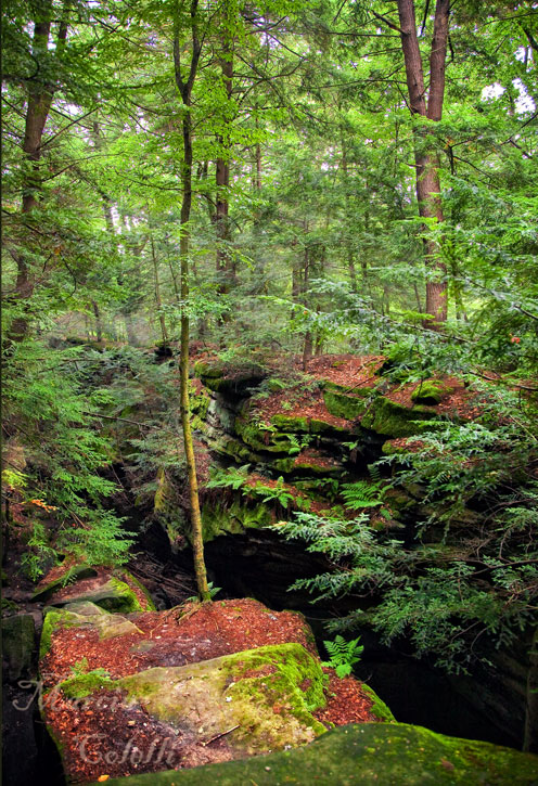 CUYAHOGA VALLEY NATIONAL PARK LEDGES_1907.jpg