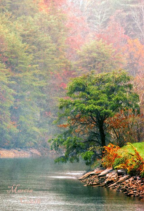 SMOKEY MOUNTAINS, TN_8757.jpg