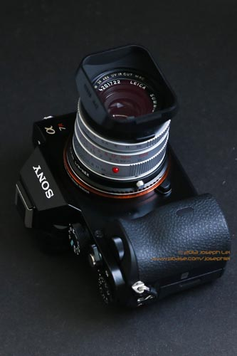 Leica 35mm f/2 Summicron-M <P>A great combo!