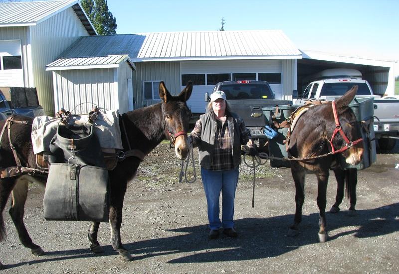 Deb with Mules.JPG