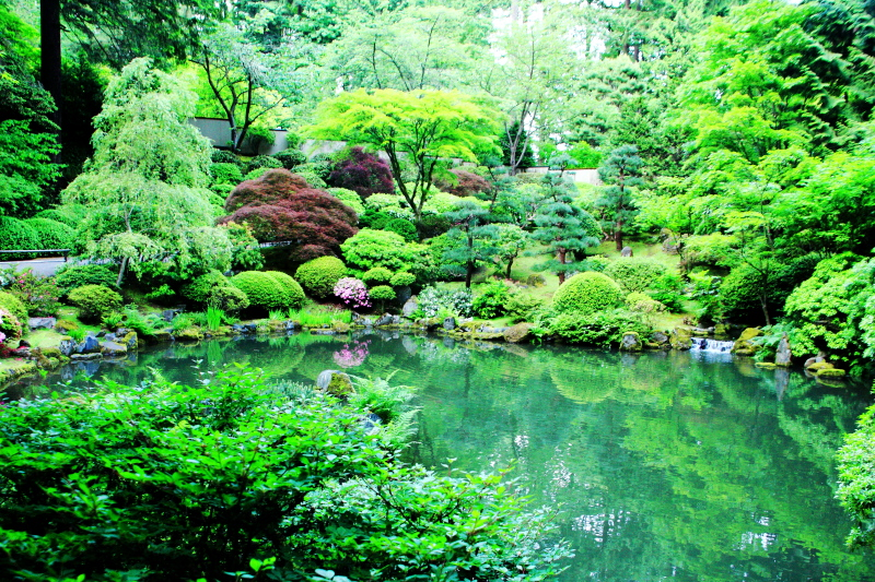 Strolling Pond Garden (chisen kaiyu shiki teien), Japanese Garden,  Portland, Oregon photo - Karthik Raja photos at pbase.com