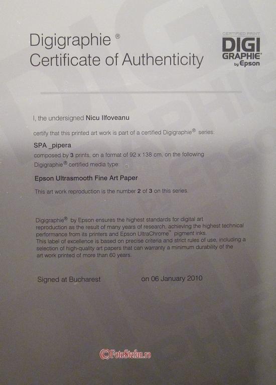 certificare Digigraphie.JPG