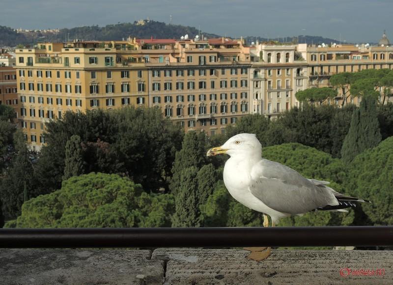 castel-sant-angelo-roma-italia-13.jpg
