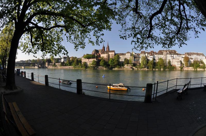 Rhine promenade on a spring morning