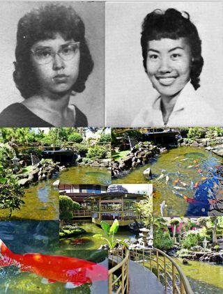 55 Years - Memories:  September 15