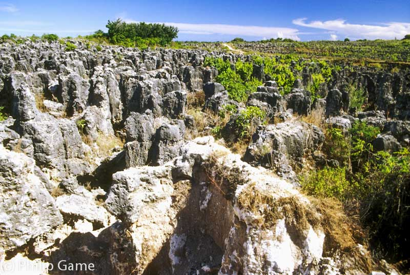 Moonscape bequeathed by phosphate mining