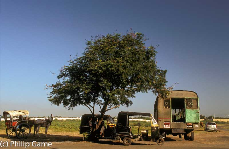 Transport waiting outside the airport terminal at Bhavnagar (population 500,000)