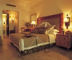 The Royal Livingstone Hotel - accomodation (their website photo)