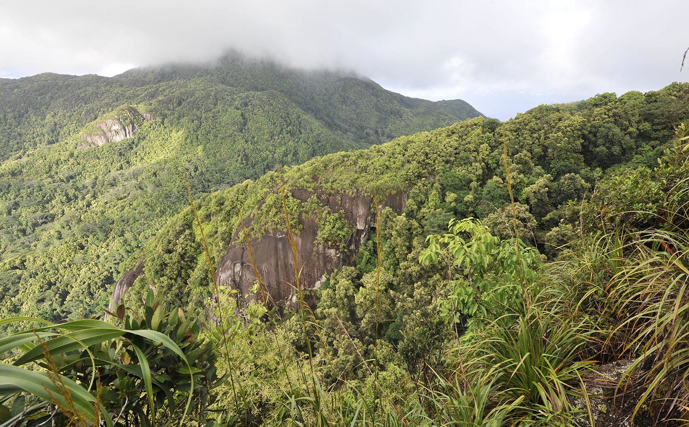 View from Morne Blanc towards Morne Seychellois.