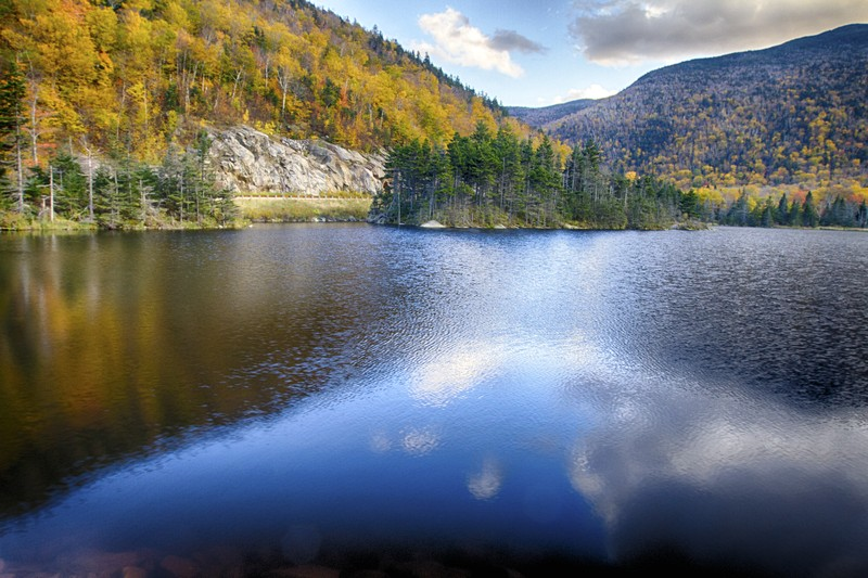 2.  Beaver Pond