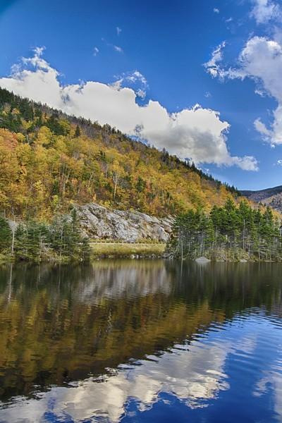 4.  Beaver Pond