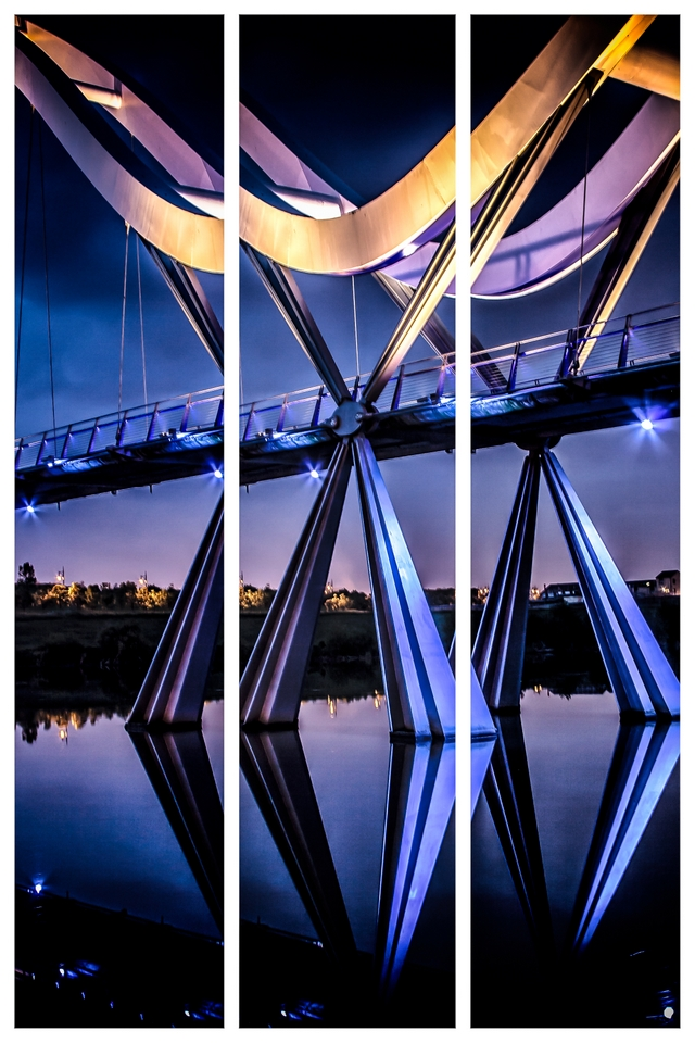IMAGE: http://upload.pbase.com/image/155894878/original.jpg
