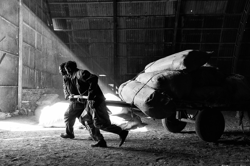 Pulling heavy load - Afghanistan