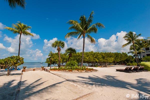 Sandy area, Hyatt Beach House 1