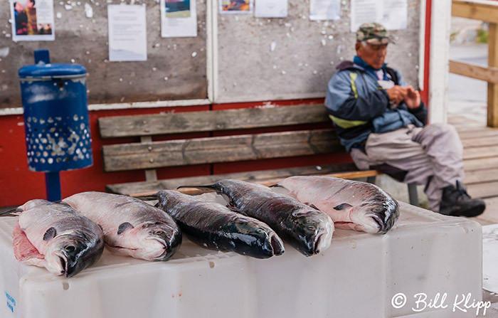 Fish Market, Qaqortoq, Greenland  2