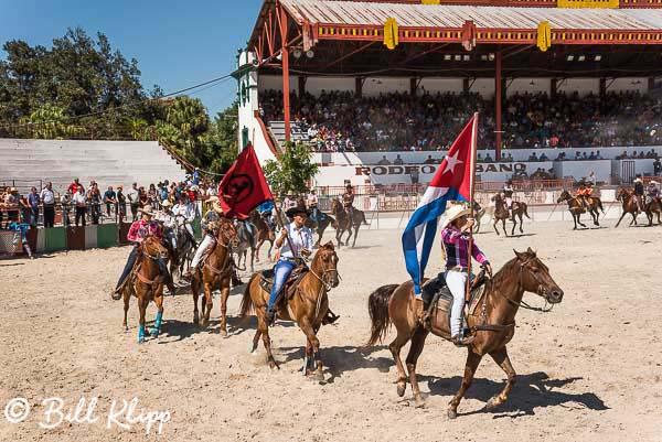 Cuban Rodeo 11