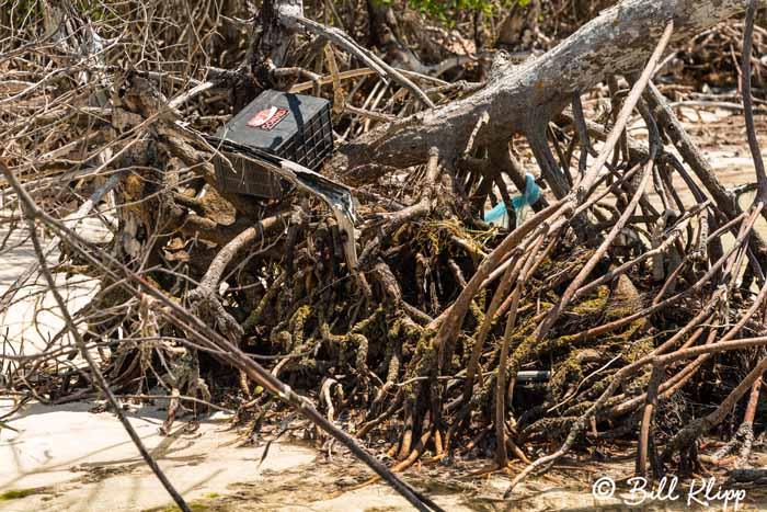 Battery Left from  Cuban Chug  1