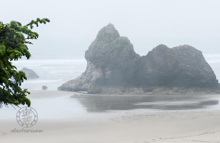 Misty Day At Arcadia 1