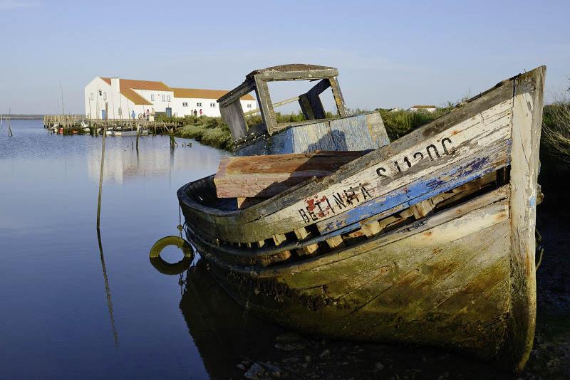 Mourisacas Setúbal, Portugal