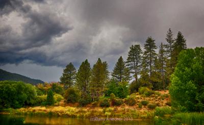 Ferns Lake