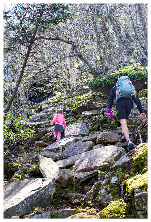 Typical Catskills trail - just get up the mountain!