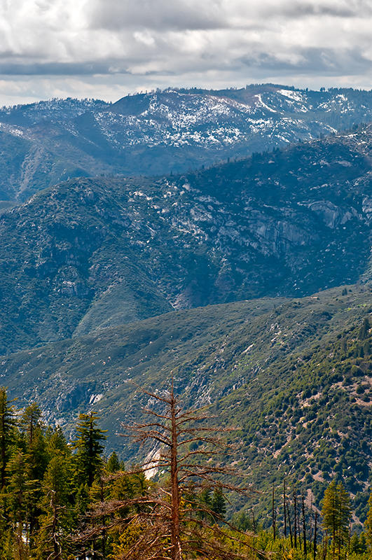View From Wawona Road