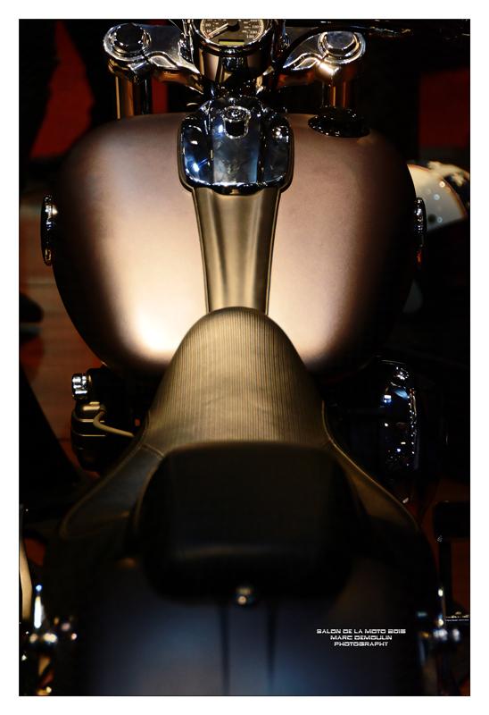 Salon de la Moto et du Scooter 2015 - 8