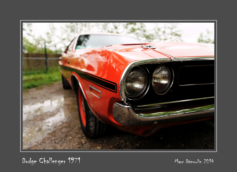 DODGE Challenger 1971 Dordives - France