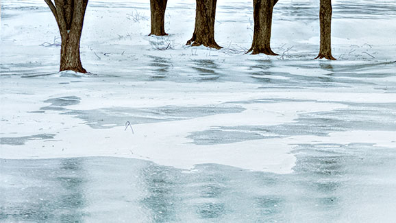 Reflections On Ice 20150106