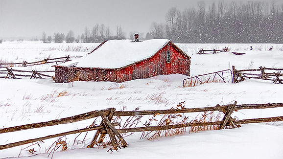 Little Red Shed In Snowfall P1080225-7v2