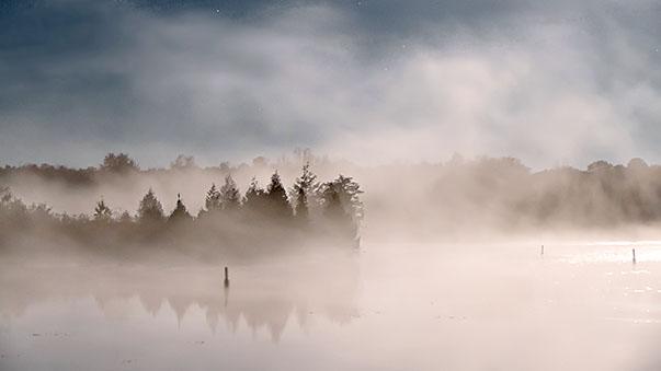 Moonlit Mist P1140013