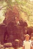 No bosque - 1984
