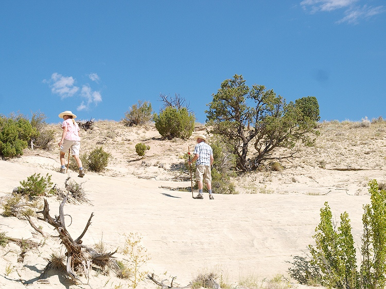 Heat of the day in a Utah desert, Southwest USA