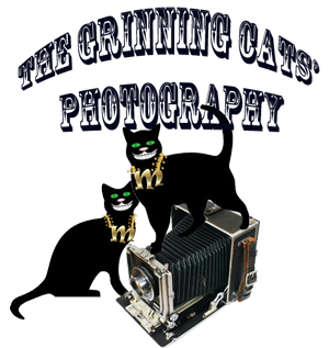 Grinning Cat Photography logo small.png