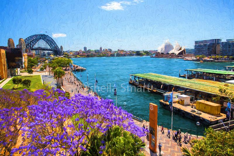 Sydney Harbour with jacaranda tree