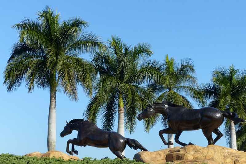 The Lely Freedom Horses #1
