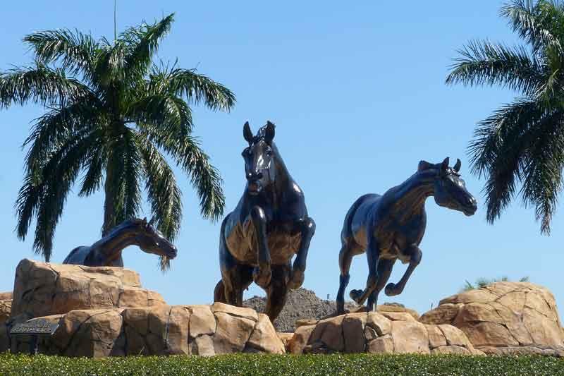 The Lely Freedom Horses #3