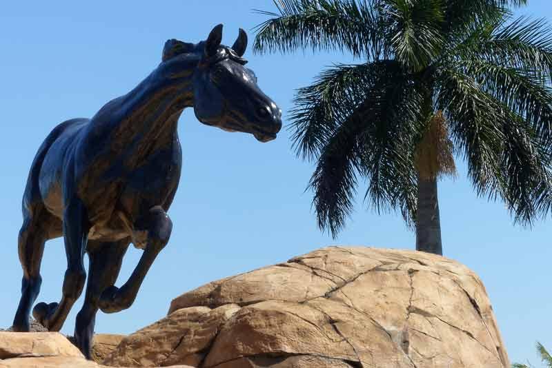 The Lely Freedom Horses #4