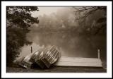 Foggy morning on Price Lake/mono